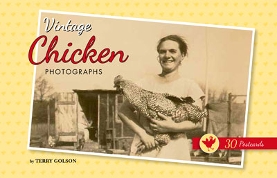 Vintage Chicken Photographs