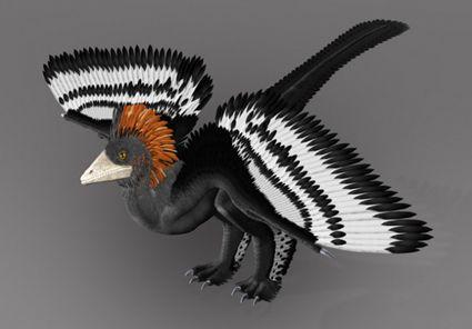 DinoFeathersFeb5