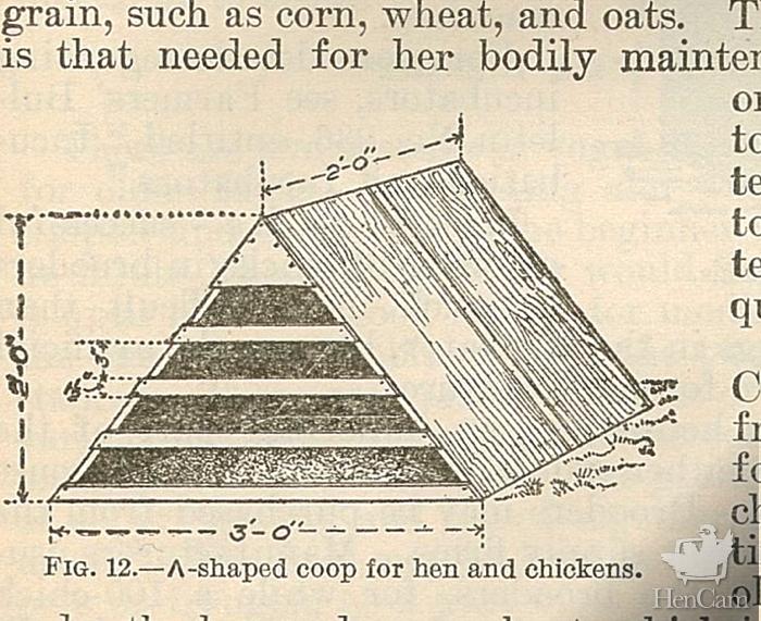 1907 brood coop