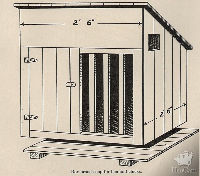 box brood coop