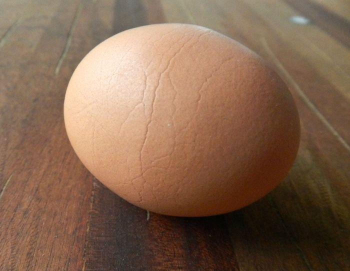 Onyx's egg