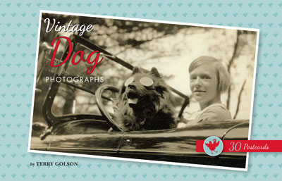 Vintage Dog Photographs