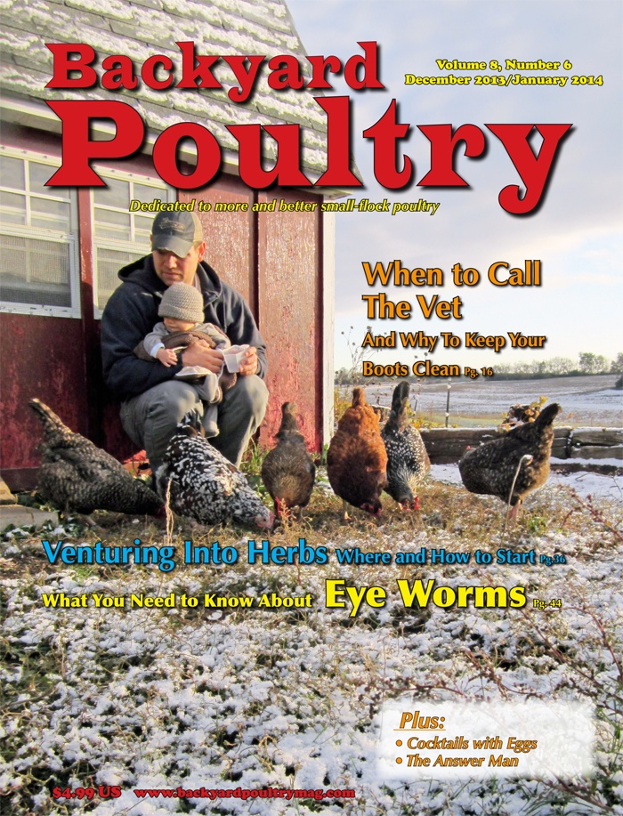 BYP-dec-jan-cover-700width - Backyard Poultry Magazine Giveaway HenCam