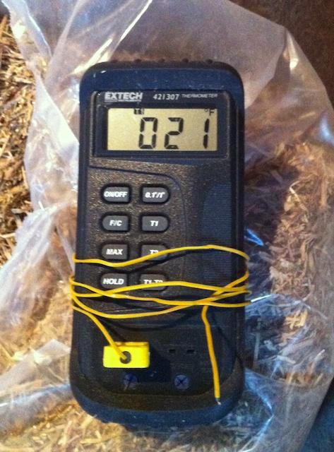 coop temperature