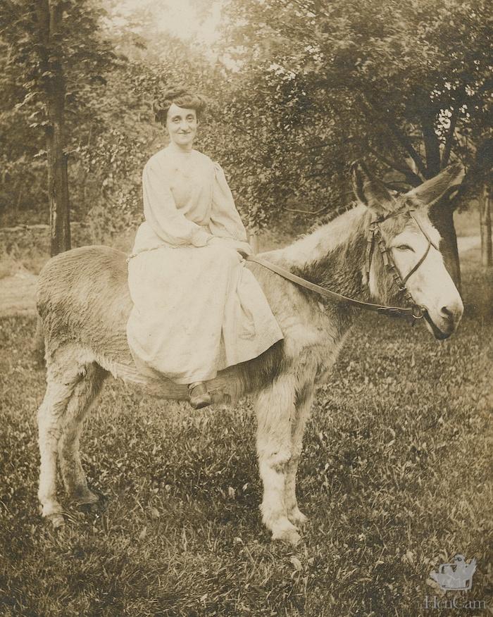 woman_riding_donkey - Version 4