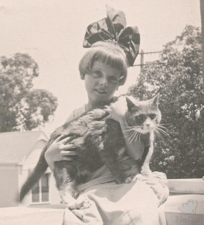 vintage cat closeup