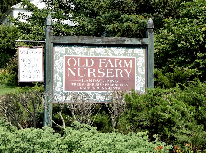 old farm nursery