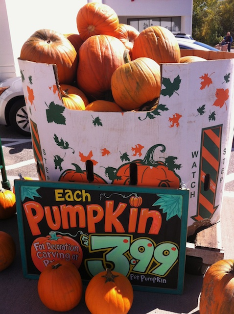 pumpkin price