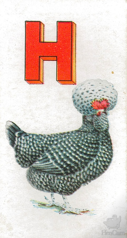 h for Houdan