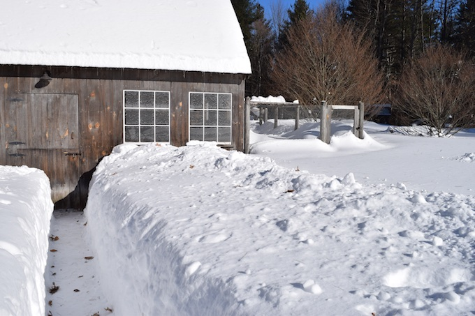snow to barn