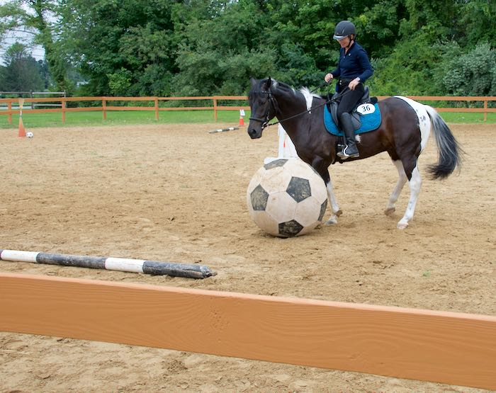 ball mounted