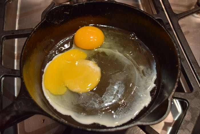 Twiggy egg