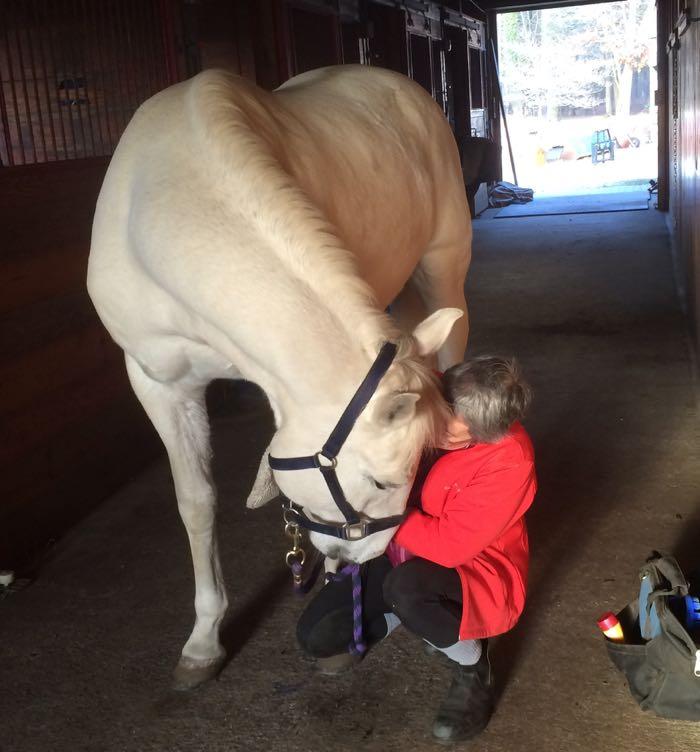 thankful horse
